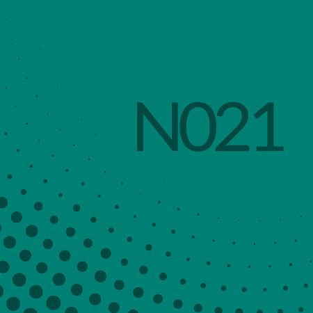 Nota 021 de Ricardo Rodulfo