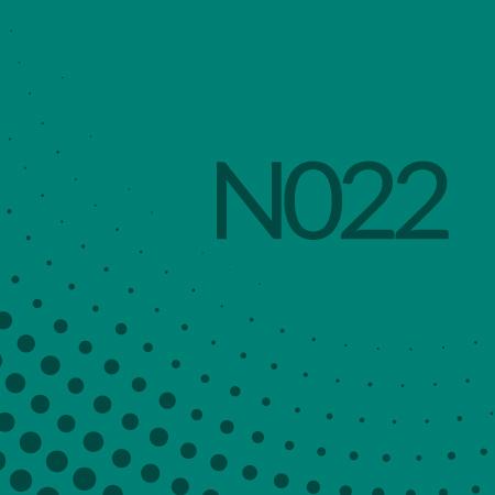 Nota 022 de Ricardo Rodulfo