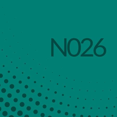 Nota 026 de Ricardo Rodulfo