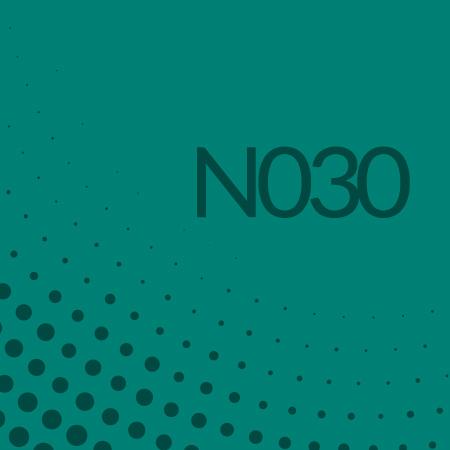 Nota 030 de Ricardo Rodulfo