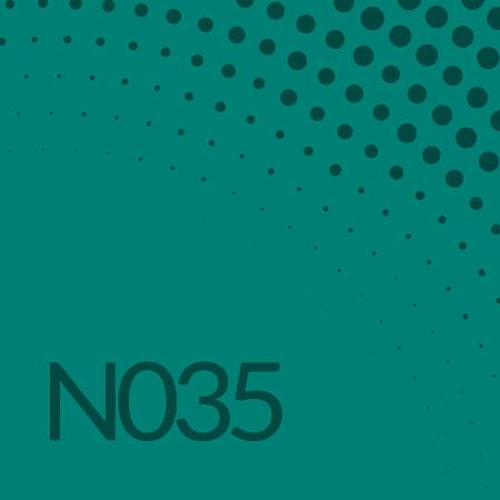 Nota 035 de Ricardo Rodulfo