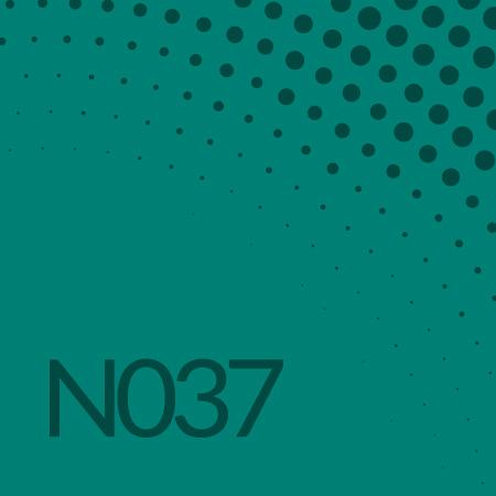 Nota 037 de Ricardo Rodulfo -t