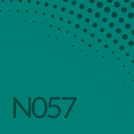 Nota 57 de Ricardo Rodulfo